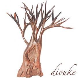 cd_diouke