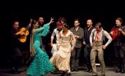 'Las Minas Puerto Flamenco', un viaje por la historia del flamenco