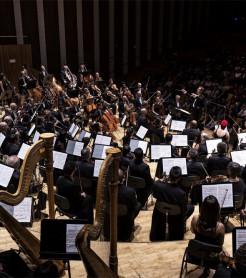 La Orquestra de València, en el Les Arts